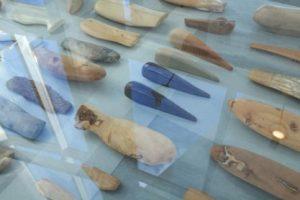 Exposición la forma de los peces en el Oceanografic Valencia