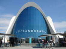 Taquillas en el Oceanografic Valencia